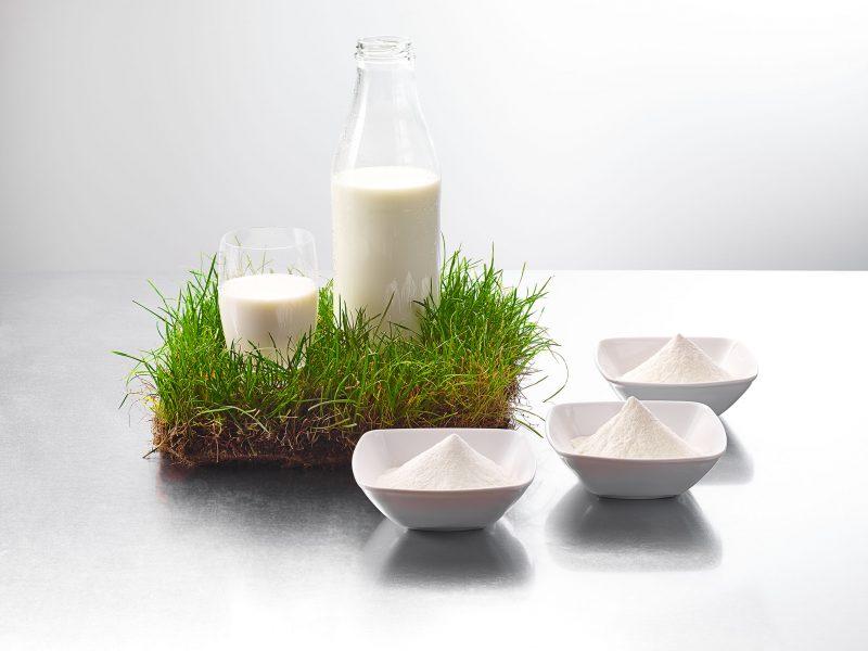 Uelzena Ingredients at Gulfood Manufacturing