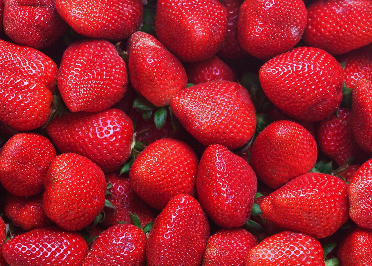 International Strawberry Symposium, postponed until 2021
