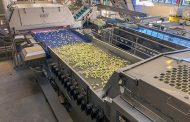 Key Technology Introduces Integrated Sorting System for Fresh-Cut Apples