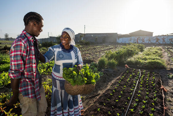 Bayer to Provide Crop Relief to Two Million Smallholder Farmers Impacted by COVID-19