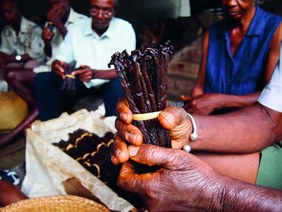 Symrise and Kellogg Company achieve ambitious goal of '100% responsibly sourced vanilla by 2020'