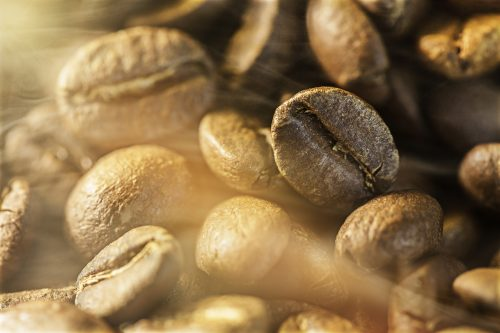 CPWE boosts coffee processing efficiency by 75% with Sortex solutions