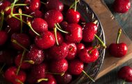 Compac overcomes challenges of pandemic to deliver full satisfaction and a successful cherry season to customers in Turkey and Uzbekistan