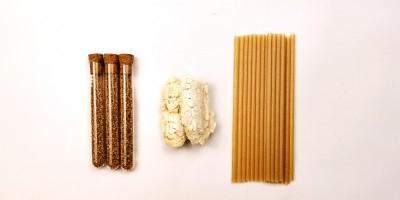 Taiwan's Sugarcane Straws Explore US Market
