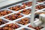 Al Barakah Dates expands to become world's largest date factory in Dubai Industrial City