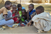 Worldwide storytelling with Pink Lady® and the United Nations World Food Programme