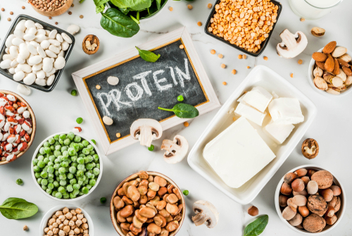 Meet the new meat, alternative protein—the upcoming food for the future