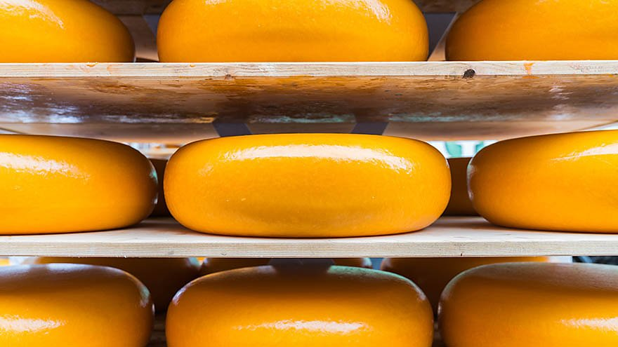 Tetra Pak Introduces 14 State-of-the-Art Lines for Cheese Manufacturers
