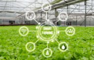 The future food - transform sustainably and secure increasingly