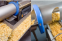 Exeter Engineering and Key Technology Form Partnership to Introduce OCULUS Digital Sorters for Potatoes to North America