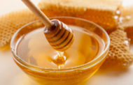 European honey and bees products!